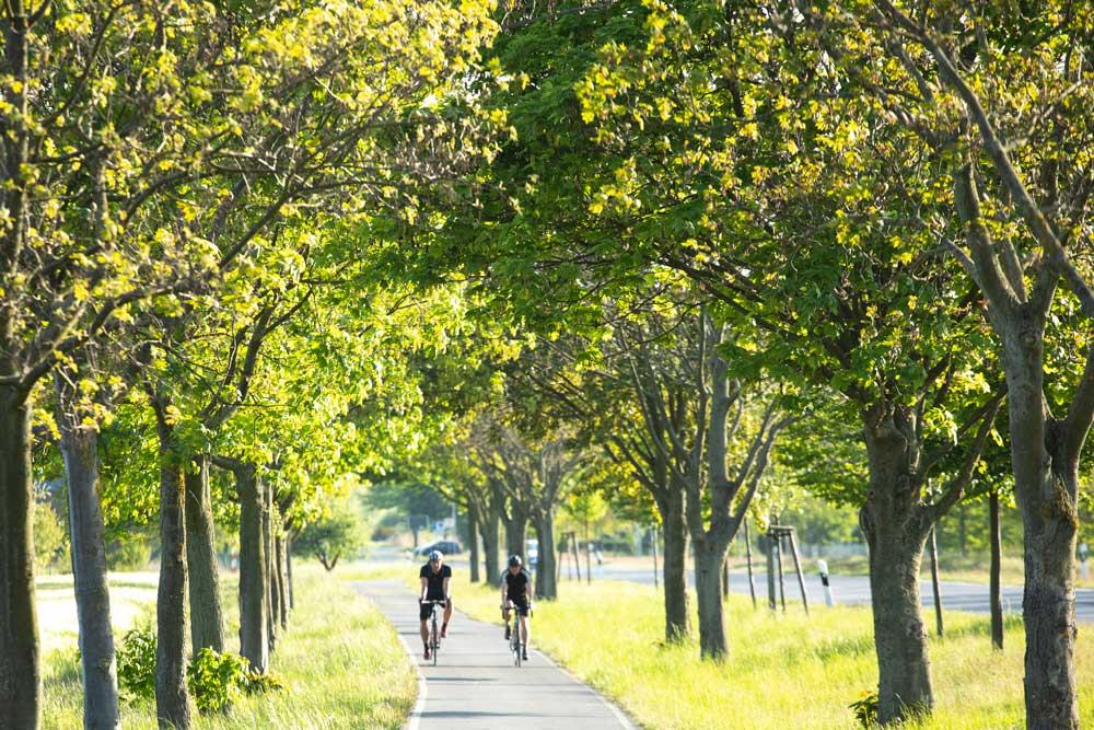 Radfahrer in Schönefeld
